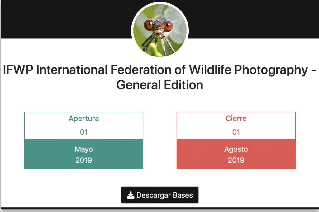 Concurso de fotografía IFWP 2019 1