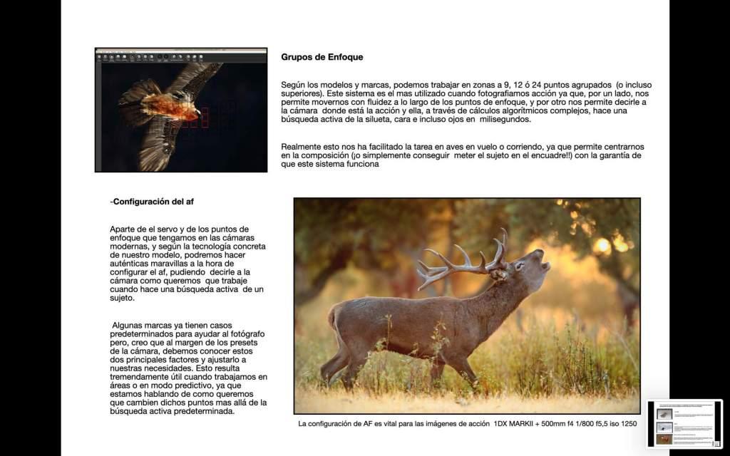 """Antonio Liébana, Libro """"El fotógrafo de fauna"""" 9"""