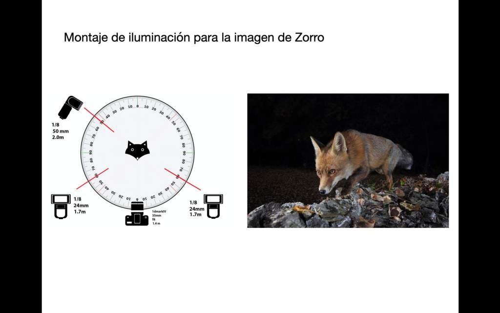 """Antonio Liébana, Libro """"El fotógrafo de fauna"""" 6"""